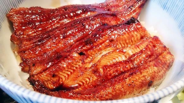 鰻サムネイル